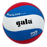 Волейбольный мяч PRO-LINE TOP